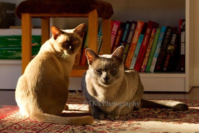 Ruby & Max