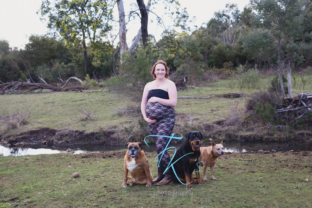 TK's Photography maternity pregnant dogs