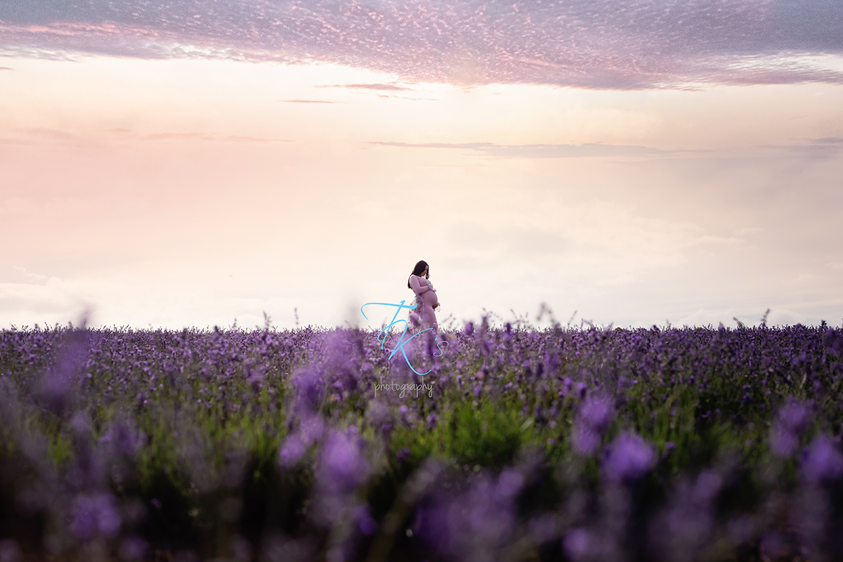 Post image for Michaela, maternity session at Bridestowe Lavender.